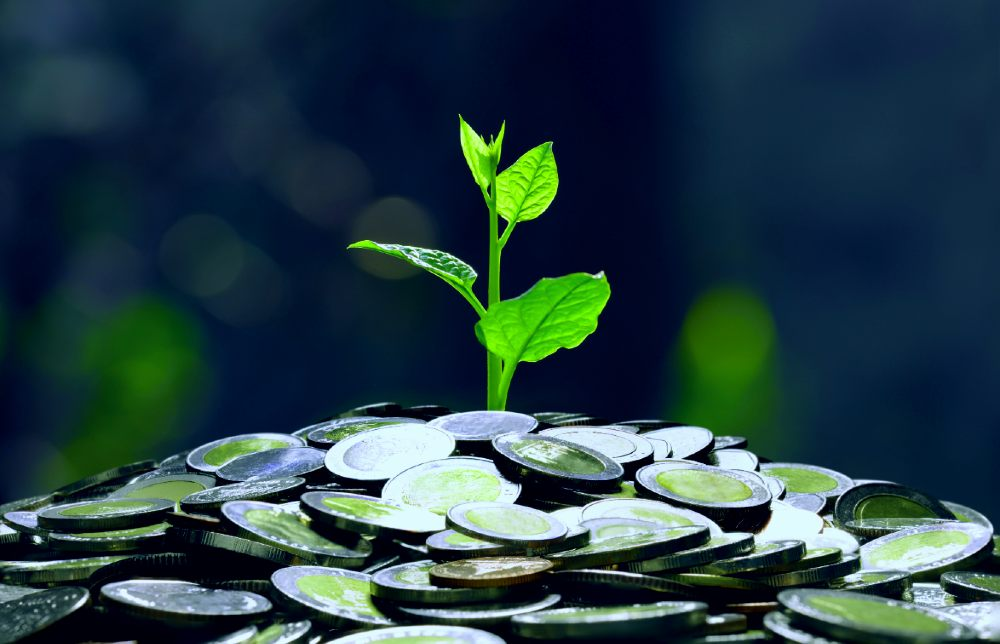 The Rise and Rise of Microfinance Startups